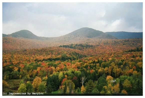 Vermont 42